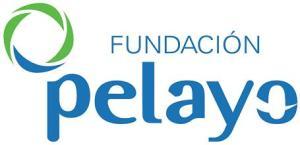 fundacion-pelayo2