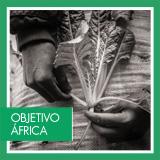 www.casaafrica.es