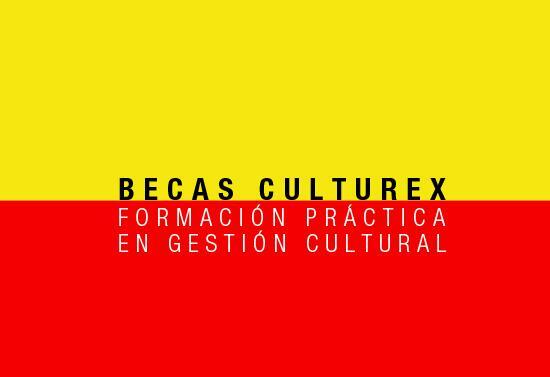 becas_culturex_1463736901