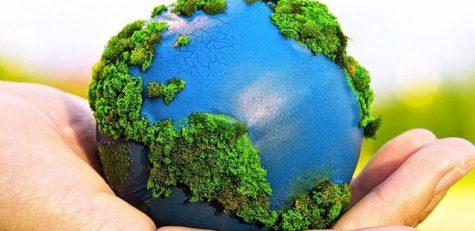 Educación-medioambiental-1024x500_c