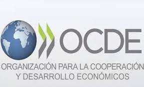 Informe de la OCDE apoyando la implantación de patinetes eléctricos (VMPs)
